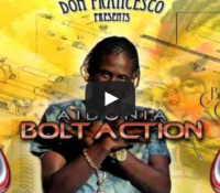 Bolt Action Quick Mix (Don Francesco)
