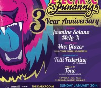 Electric Punanny Anniversary