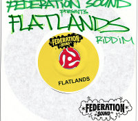 Flatlands Riddim on iTunes
