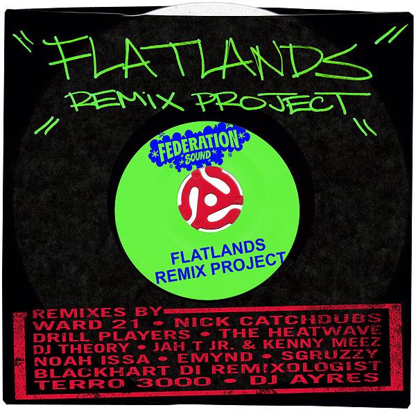 Flatlands Remix web