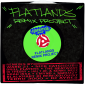 Flatlands Remix web2